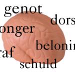 Voedselkeuze te voorspellen via hersenscan